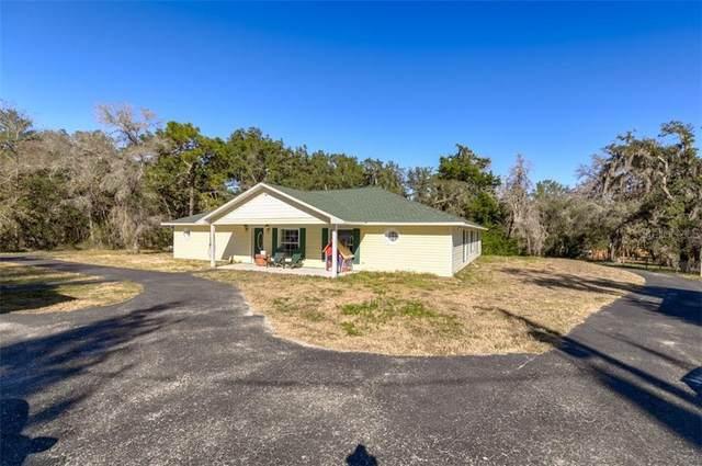 10423 Shady Drive, Hudson, FL 34669 (MLS #U8109122) :: Premier Home Experts