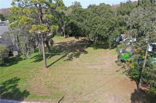 Highland Road, Tarpon Springs, FL 34689 (MLS #U8109284) :: Griffin Group