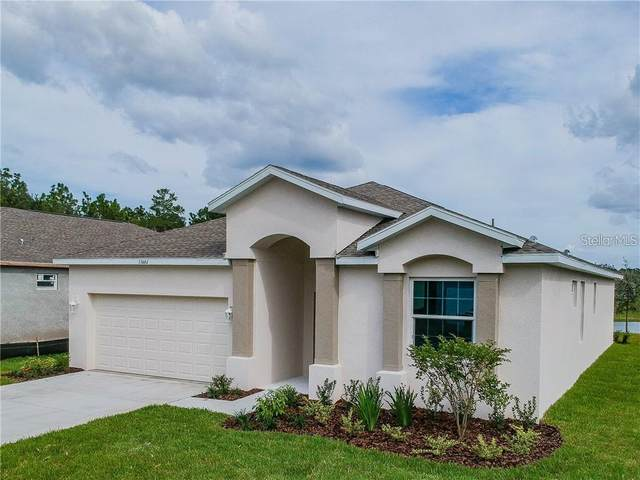 13605 Marilyn Court, Hudson, FL 34669 (MLS #U8109464) :: The Price Group