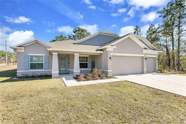 11290 Labrador Duck Road, Weeki Wachee, FL 34614 (MLS #U8109582) :: Lockhart & Walseth Team, Realtors