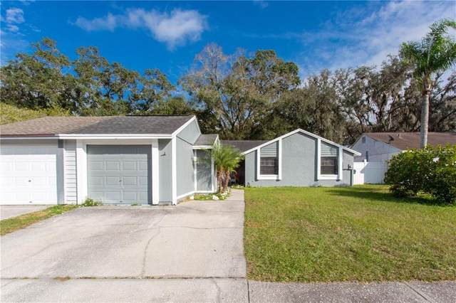 16009 Grass Lake Drive, Tampa, FL 33618 (MLS #U8109774) :: Cartwright Realty