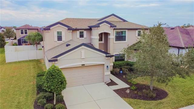 8437 Bluevine Sky Drive, Land O Lakes, FL 34637 (MLS #U8109807) :: Everlane Realty