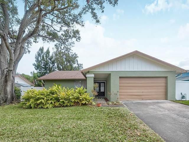 2351 Hawthorne Drive, Clearwater, FL 33763 (MLS #U8109838) :: Dalton Wade Real Estate Group