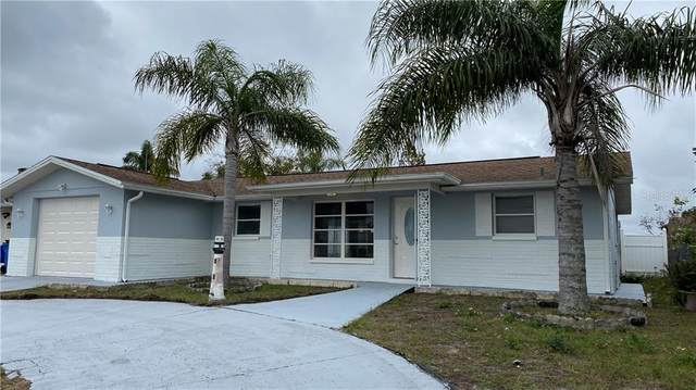 7918 Greybirch Terrace, Port Richey, FL 34668 (MLS #U8110103) :: The Heidi Schrock Team