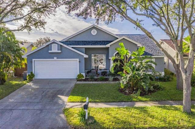 1072 Mainsail Drive, Tarpon Springs, FL 34689 (MLS #U8110127) :: Everlane Realty