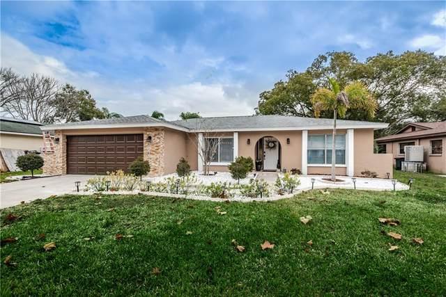 425 Evergreen Drive, Oldsmar, FL 34677 (MLS #U8110244) :: Dalton Wade Real Estate Group