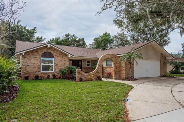 42 Freshwater Drive, Palm Harbor, FL 34684 (MLS #U8110250) :: Your Florida House Team