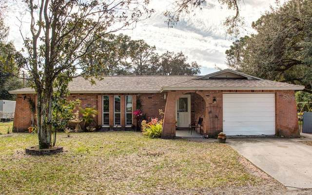 17636 Eagle Lane, Lutz, FL 33558 (MLS #U8110254) :: RE/MAX Premier Properties