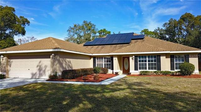 2 Graytwig Court N, Homosassa, FL 34446 (MLS #U8110258) :: Everlane Realty