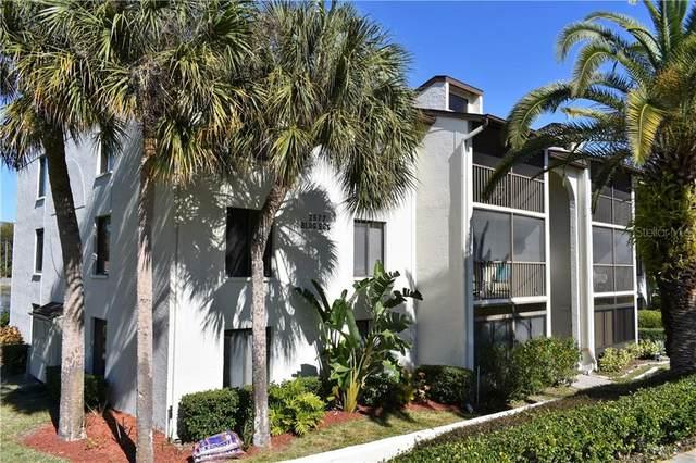 2677 Pine Ridge Way N D1, Palm Harbor, FL 34684 (MLS #U8110278) :: GO Realty