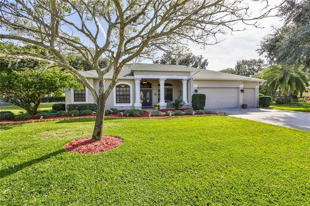 13730 Mill Place, Odessa, FL 33556 (MLS #U8110324) :: Griffin Group