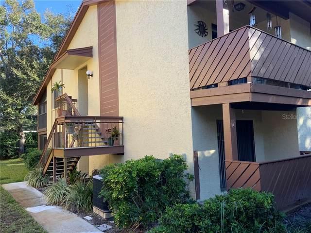 511 Mistletoe Court A, Safety Harbor, FL 34695 (MLS #U8110359) :: The Paxton Group