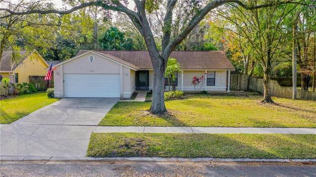 6210 Turtle Creek Boulevard, Tampa, FL 33625 (MLS #U8110444) :: Carmena and Associates Realty Group