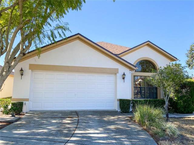 13833 Leroux Drive, Hudson, FL 34669 (MLS #U8110452) :: Bob Paulson with Vylla Home