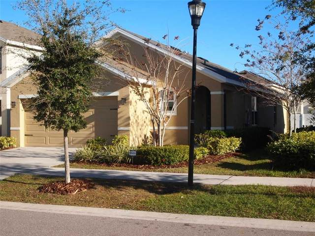 10148 Geese Trail Circle, Sun City Center, FL 33573 (MLS #U8110526) :: Visionary Properties Inc