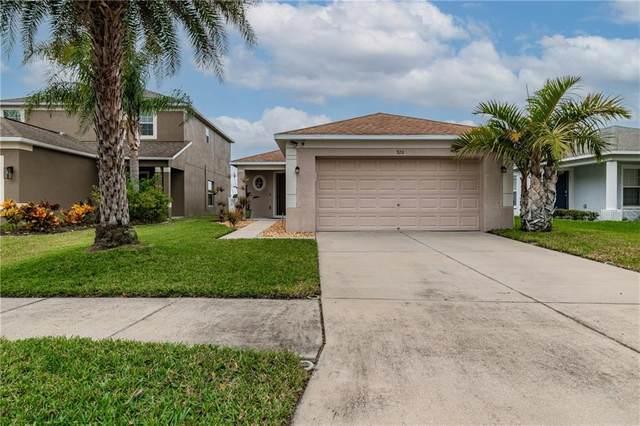 928 Seminole Sky Drive, Ruskin, FL 33570 (MLS #U8110532) :: Everlane Realty