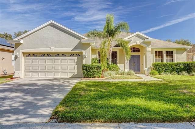 1721 Loriana Street, Brandon, FL 33511 (MLS #U8110582) :: Griffin Group