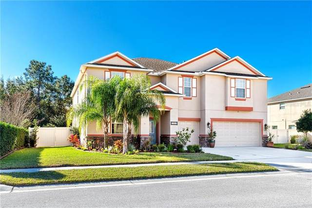 13856 Crest Lake Drive, Hudson, FL 34669 (MLS #U8110598) :: Realty Executives Mid Florida