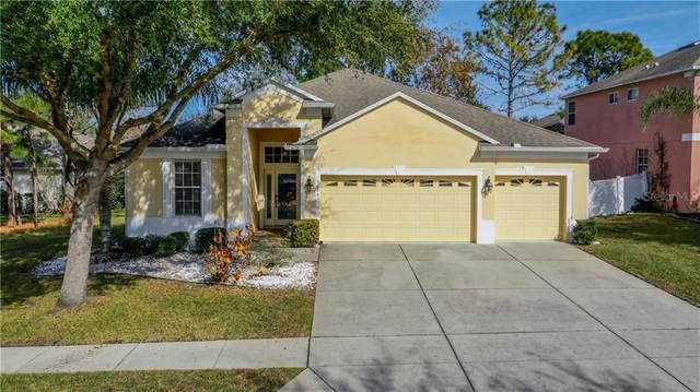 3673 Braemere Drive, Spring Hill, FL 34609 (MLS #U8110829) :: Griffin Group