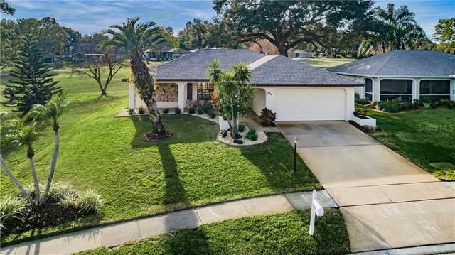 1514 Wicklow Drive, Palm Harbor, FL 34684 (MLS #U8110914) :: Team Borham at Keller Williams Realty