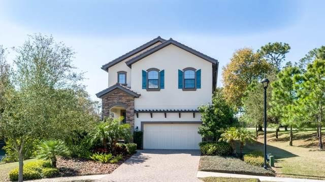 1341 Marinella Drive, Palm Harbor, FL 34683 (MLS #U8111008) :: Delgado Home Team at Keller Williams