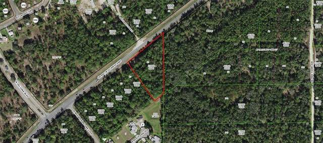 6545 N Lecanto Highway, Beverly Hills, FL 34465 (MLS #U8111028) :: Delgado Home Team at Keller Williams