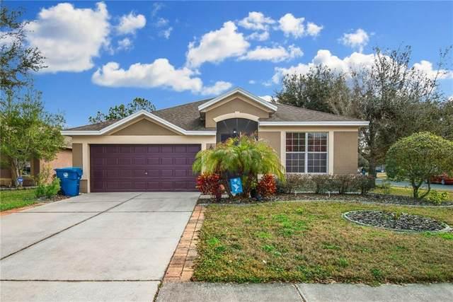 778 Nodding Shade Drive, Brooksville, FL 34604 (MLS #U8111039) :: New Home Partners