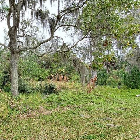 N Highland Avenue, Tarpon Springs, FL 34688 (MLS #U8111047) :: Bridge Realty Group