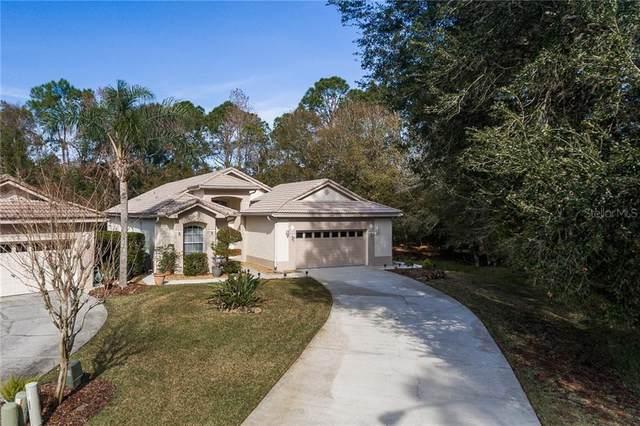 4048 Silk Oak Lane, Palm Harbor, FL 34685 (MLS #U8111075) :: Visionary Properties Inc