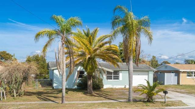5209 Flora Avenue, Holiday, FL 34690 (MLS #U8111156) :: Cartwright Realty