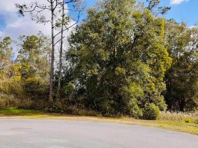11520 Wicketts Way, Dade City, FL 33525 (MLS #U8111241) :: Delta Realty, Int'l.