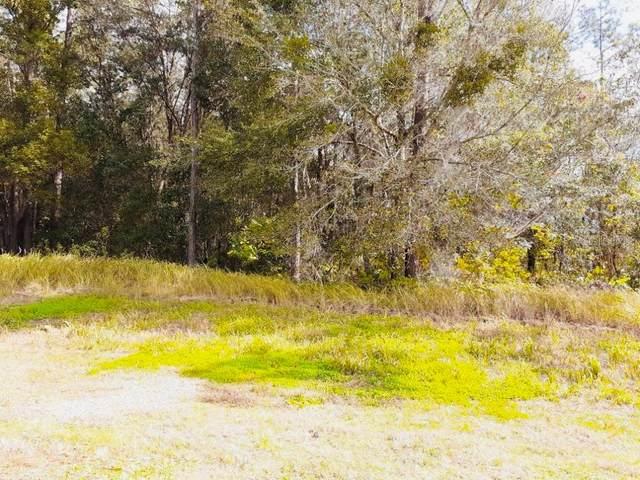 11508 Wicketts Way, Dade City, FL 33525 (MLS #U8111247) :: Delta Realty, Int'l.
