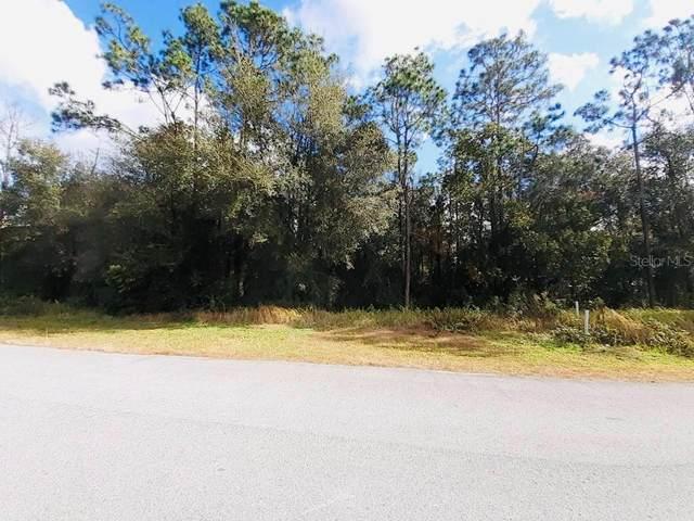 11530 Wicketts Way, Dade City, FL 33525 (MLS #U8111248) :: Homepride Realty Services