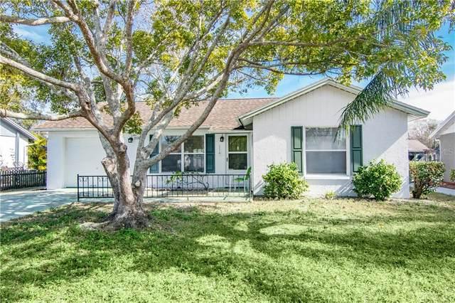 3538 Martell Street, New Port Richey, FL 34655 (MLS #U8111250) :: Florida Real Estate Sellers at Keller Williams Realty