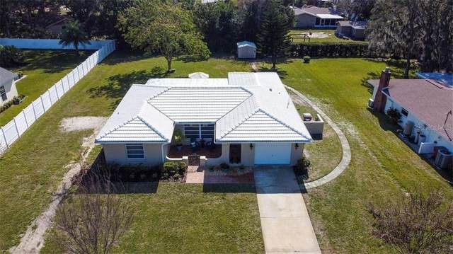 710 Robin Avenue, Palm Harbor, FL 34683 (MLS #U8111408) :: Team Bohannon Keller Williams, Tampa Properties