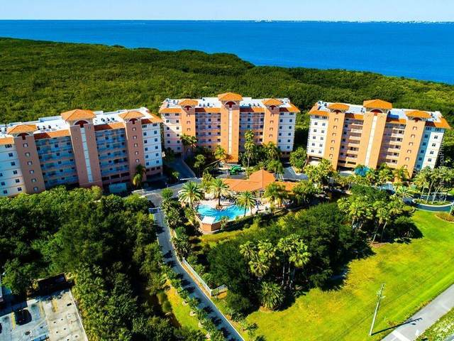 12033 Gandy Boulevard N #155, St Petersburg, FL 33702 (MLS #U8111850) :: RE/MAX Marketing Specialists