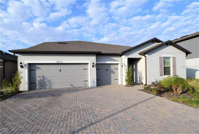 19113 Perennial Rose Avenue, Lutz, FL 33558 (MLS #U8112594) :: Delgado Home Team at Keller Williams