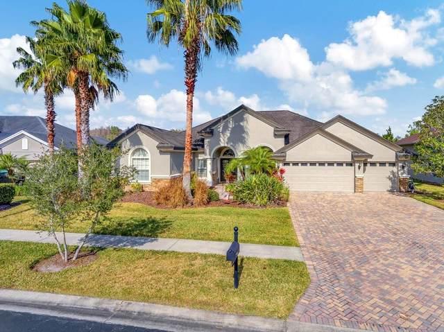 26947 Winged Elm Drive, Wesley Chapel, FL 33544 (MLS #U8112995) :: Griffin Group