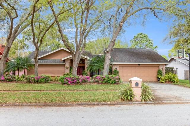 2550 Frisco Drive, Clearwater, FL 33761 (MLS #U8113032) :: Vacasa Real Estate