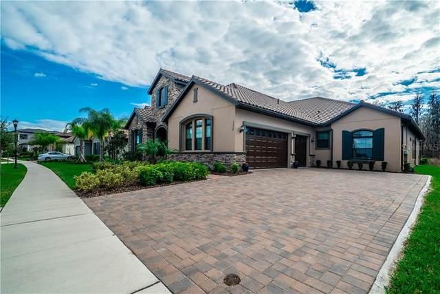 3628 Madison Cypress Drive, Lutz, FL 33558 (MLS #U8113050) :: Premier Home Experts