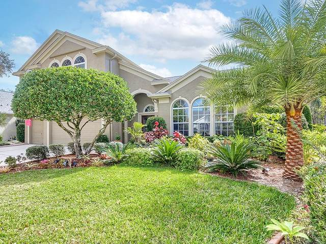 4356 Ellinwood Boulevard, Palm Harbor, FL 34685 (MLS #U8113414) :: Team Borham at Keller Williams Realty