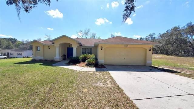 16620 Bosley Drive, Spring Hill, FL 34610 (MLS #U8113451) :: Keller Williams Realty Peace River Partners