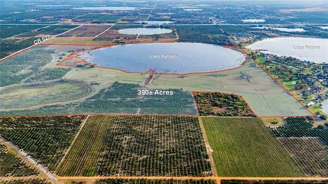 3073 County Road 627, Avon Park, FL 33825 (MLS #U8113680) :: Florida Real Estate Sellers at Keller Williams Realty
