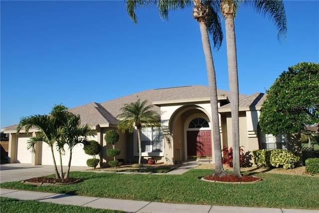 798 Belted Kingfisher Drive N, Palm Harbor, FL 34683 (MLS #U8113707) :: Bridge Realty Group
