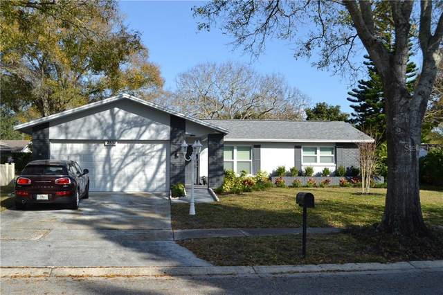 2851 Doone Circle, Palm Harbor, FL 34684 (MLS #U8113863) :: The Duncan Duo Team