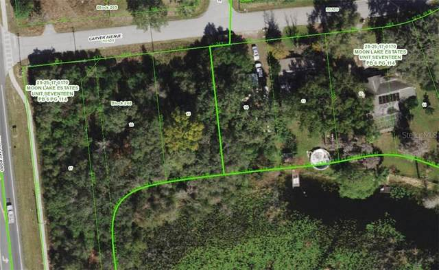 Carver Avenue, New Port Richey, FL 34654 (MLS #U8114037) :: BuySellLiveFlorida.com