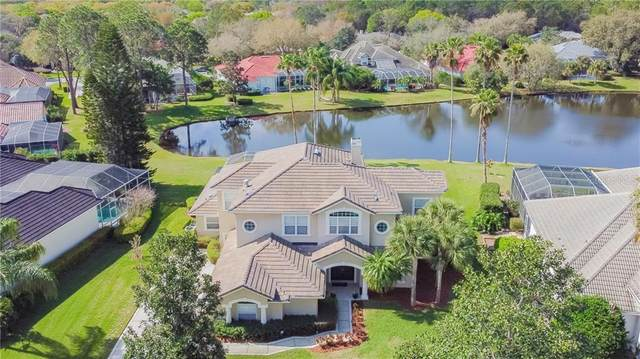 6426 Renwick Circle, Tampa, FL 33647 (MLS #U8114042) :: Cartwright Realty