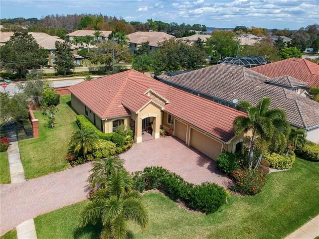 2561 Grand Lakeside Drive, Palm Harbor, FL 34684 (MLS #U8114048) :: Rabell Realty Group