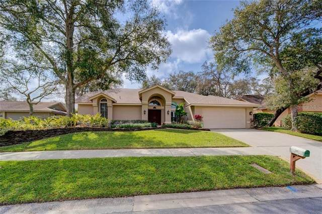 1433 Mallard Place, Palm Harbor, FL 34683 (MLS #U8114051) :: EXIT King Realty