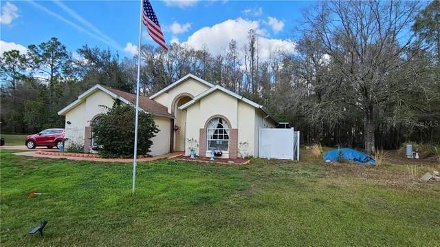 Wesley Chapel, FL 33544 :: Everlane Realty